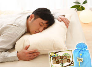 <ザ・羽根枕>まるでホテルにいる気分!ふんわり柔らか気持ちいい贅沢な羽根枕☆