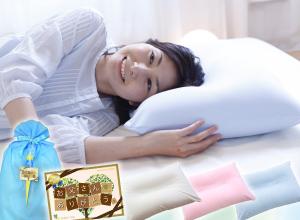 <王様の夢枕>61万人が眠った大人気の安眠枕!当店販売実績NO.1の超定番商品☆