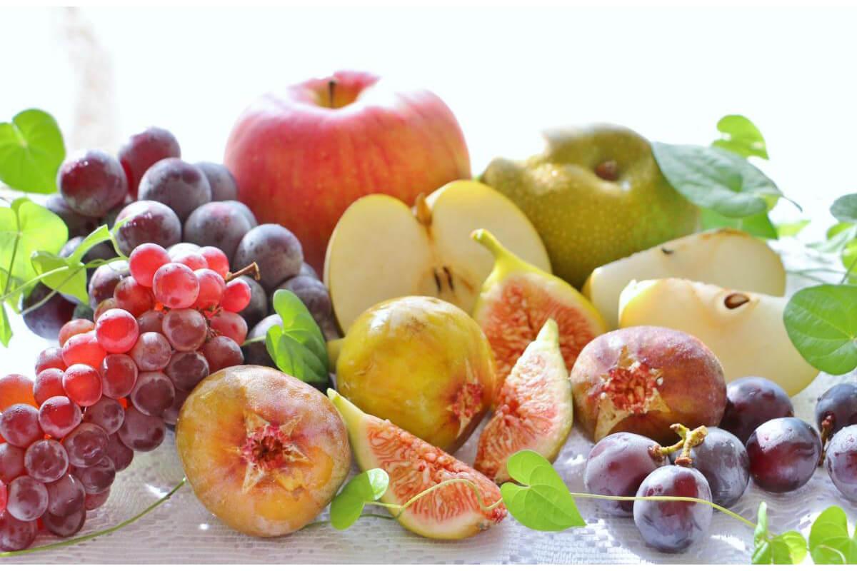 【父の日ギフト】フルーツ・果物