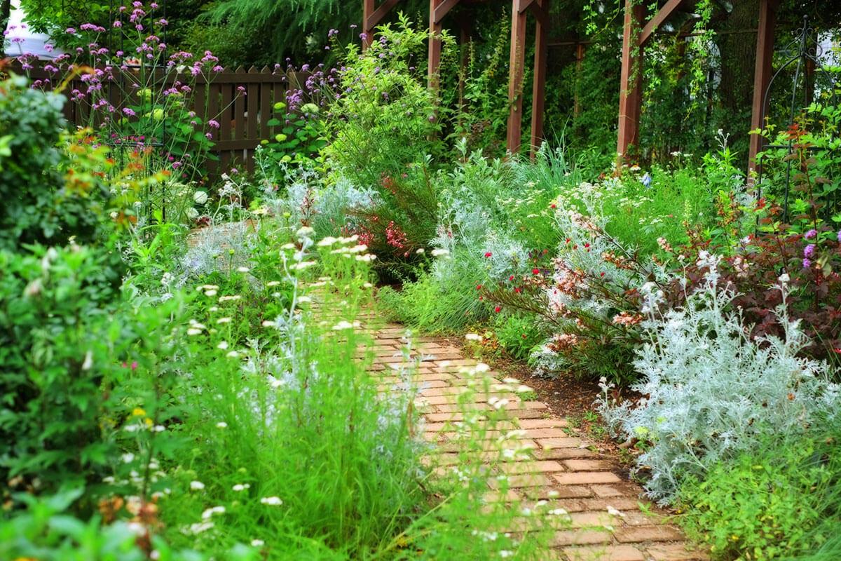 【父の日ギフト】ガーデニング・庭いじり