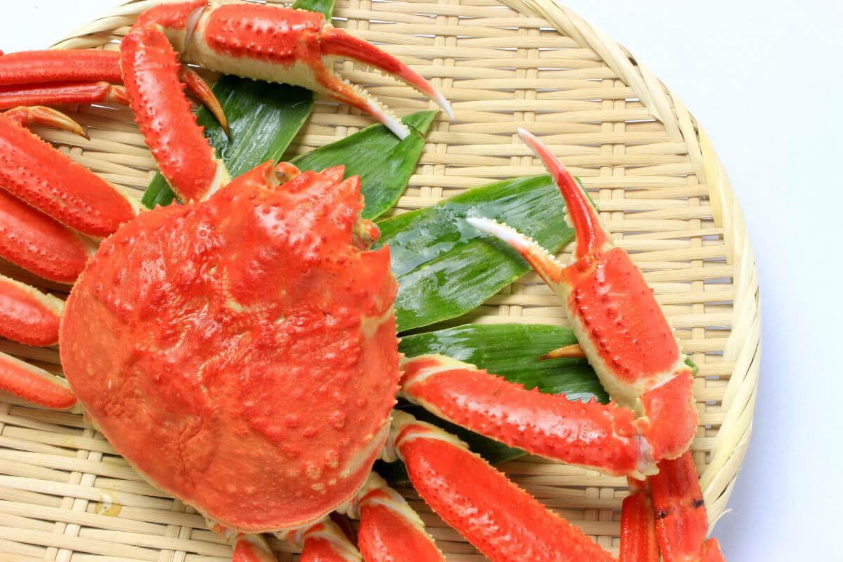 【父の日ギフト】カニ・蟹