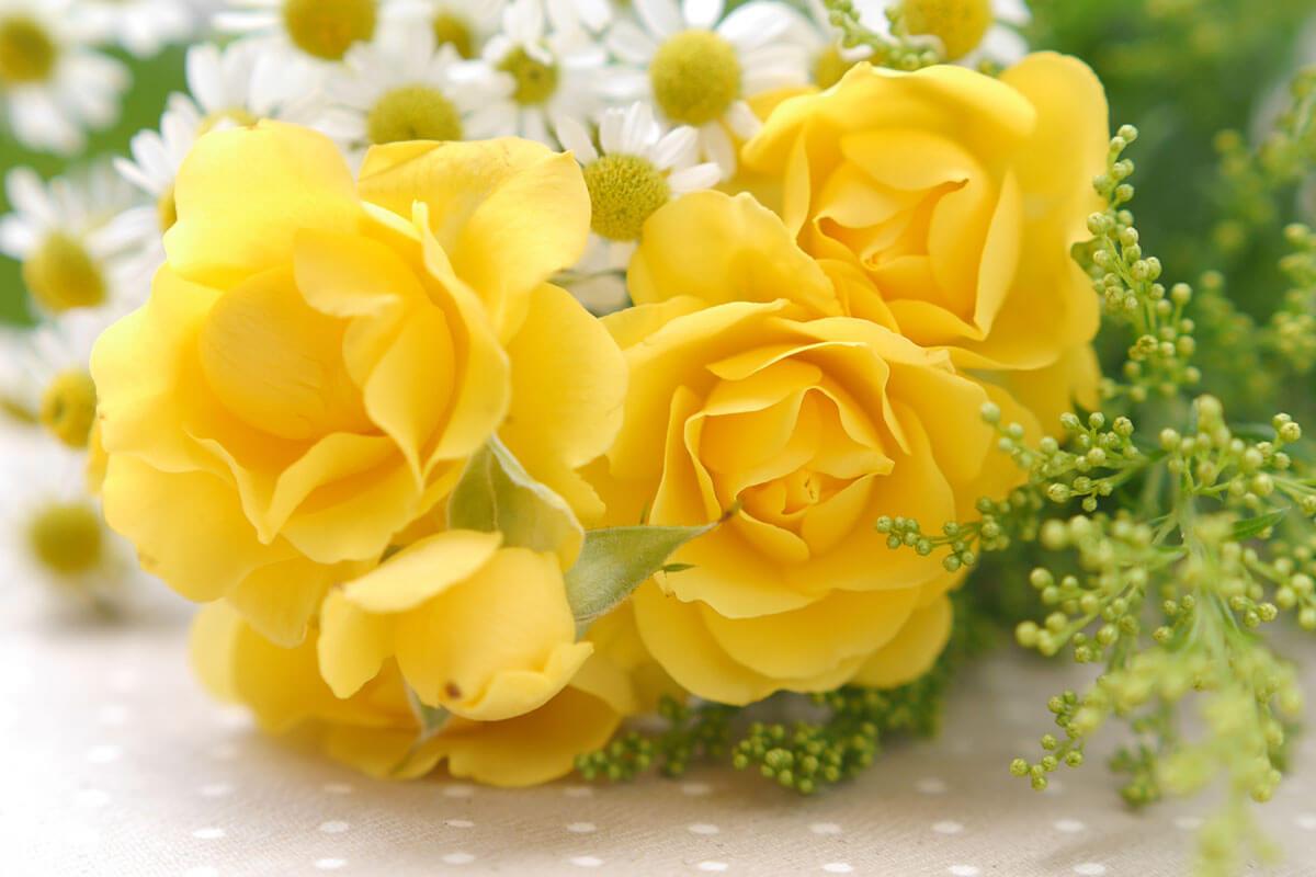【父の日ギフト】お花(黄色)