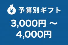 3,000円~4,000円未満