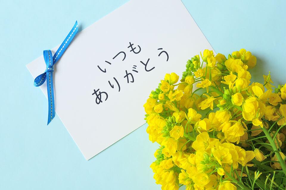父の日にはどのお花を贈る?花の種類や花以外の人気ギフトも紹介!