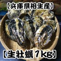 【生食可】殻付き生牡蠣1kg